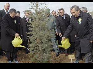 Ağaçlandırma çalışmalarında ilk üçe girdik