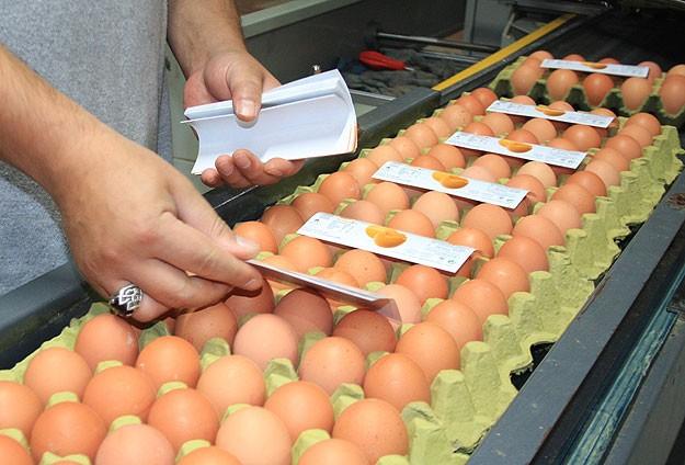 Türk yumurtası Rusya yolcusu