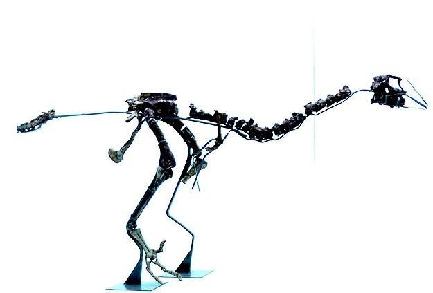 Yeni bir dinozor türünün fosili bulundu