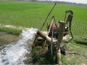 Altınekine 215 bin liralık sulama ödeneği
