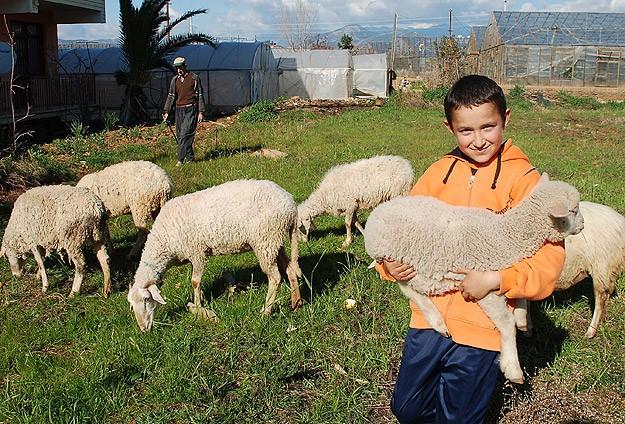 Dünya Gıda Gününün teması aile çiftçiliği