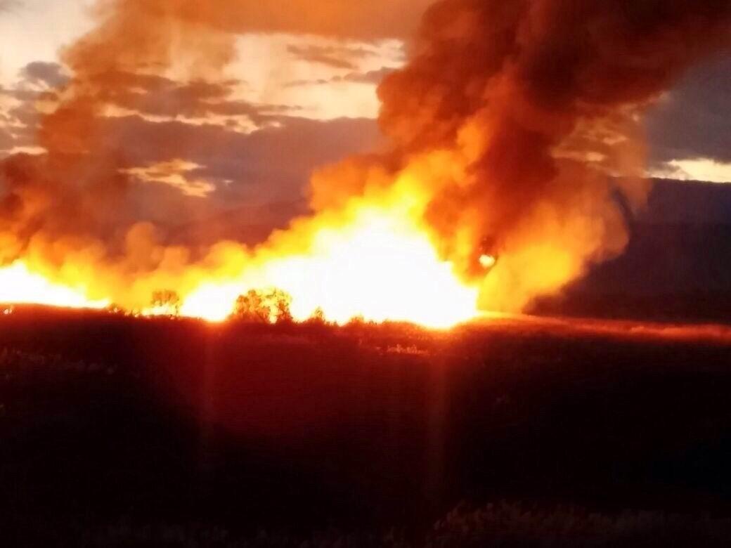 Beyşehirde sazlık yangını