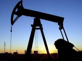 Petrol ve doğalgaz için 1.086 kuyu açılacak