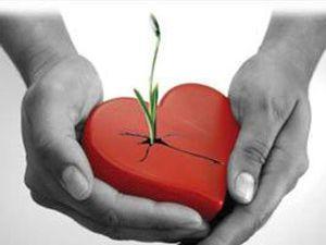 Organ bağışında Türkiyenin durumu