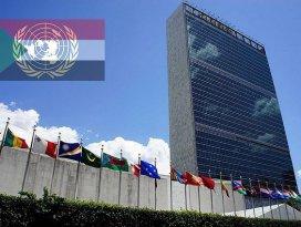 BM temsilcisinin açıklamaları göreviyle çelişiyor