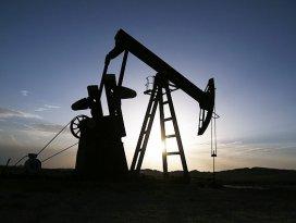 Eski eser diye petrol aramışlar