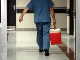28 bin hasta organ bekliyor