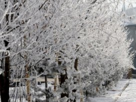 Konyaya buzlanma ve don uyarısı