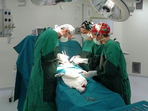 61 yıllık ilçede ilk ameliyat