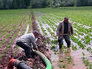 Devlet Konyada da toprak dağıtacak