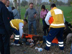Konyada domuz kazası: 4 yaralı
