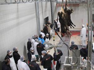 Konya'ya yeni et entegre tesisi