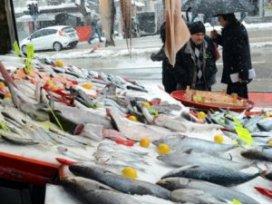 Balık fiyatları el yakıyor