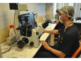 Kalp hastaları için kök hücre umudu