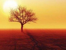 134 yılın en sıcak Martı yaşanıyor