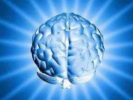 Beyin sabah daha büyük