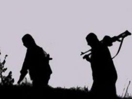 Tuncelide PKKnın üst düzey yöneticisi öldürüldü