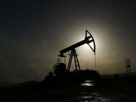 Ham petrol ithalatı martta azaldı