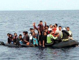 3 ayda 48 bin kaçak kurtarıldı