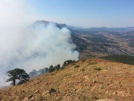 Konyada çıkan orman yangını söndürüldü