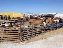 Selçuklu'da kurban satış ve kesim yerleri belli oldu