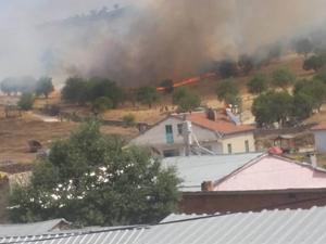 Beyşehir'de anız yangını mezarlığı da yaktı