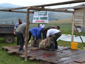 AYDER Bosna Hersek'te yüzleri güldürdü