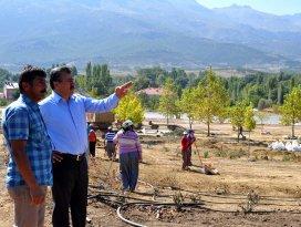 Seydişehir Belediyesi'nden park çalışması