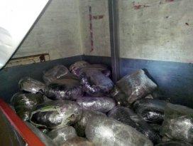 308 kilo esrar sevkiyatına tutuklama