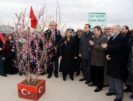 Meram'da şehit aileleri hatıra ormanı oluşturuldu