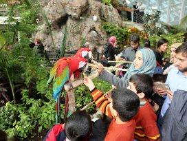 Suriyeli yetimler Tropikal Kelebek Bahçesini gezdi