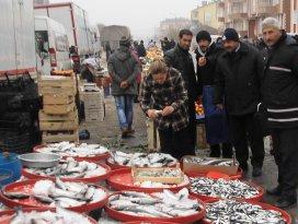 Cihanbeylide balık tezgahları denetlendi
