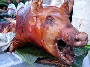 Domuz etini tespit eden alet geliştirildi