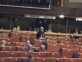 Ustadan Avrupa Konseyine anlamlı başörtü mesajı
