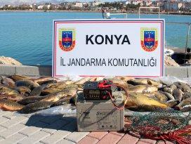 Elektroşok cihazıyla balık avına ceza