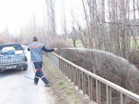 Beyşehir'de larva mücadelesi hız kazandı