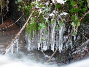 Konya ve çevresine zirai don uyarısı