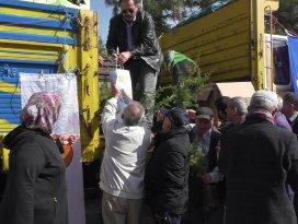 Beyşehir'de ücretsiz orman fidanı dağıtıldı