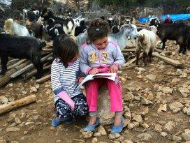 Sarıkeçililer eğitim için konargöçerlikten vazgeçiyor