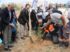 Selçuklu'da 10 bin fidan toprakla buluştu