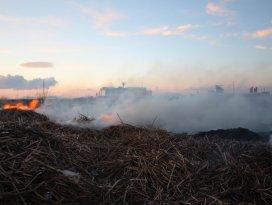 Beyşehir sazlıklarında yangın