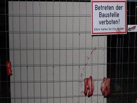Avusturyada camiye domuzlu saldırı