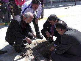 Beyşehir Gençlik Merkezinin çevresi ağaçlandırıldı