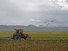 Genç çiftçilere hibe için başvurularda yarın son gün