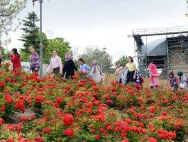 Güller şehri Konya