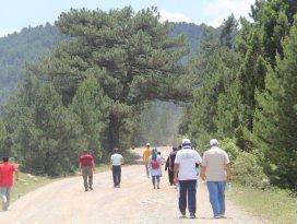 Beyşehir'de doğa yürüyüşü etkinliği