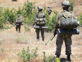 Siirt Pervaride terör örgütüne operasyon