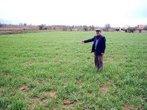 Meteoroloji çiftçiyi umutlandırdı