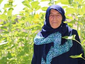 70 yaşındaki Fatma Nine, eşinin vasiyetini gerçekleştirmek için köyünü terk etmedi