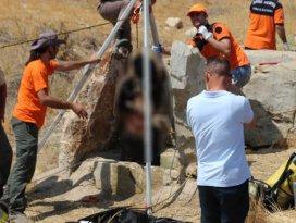Kayıp Afgan çobanın cesedi su kuyusunda bulundu